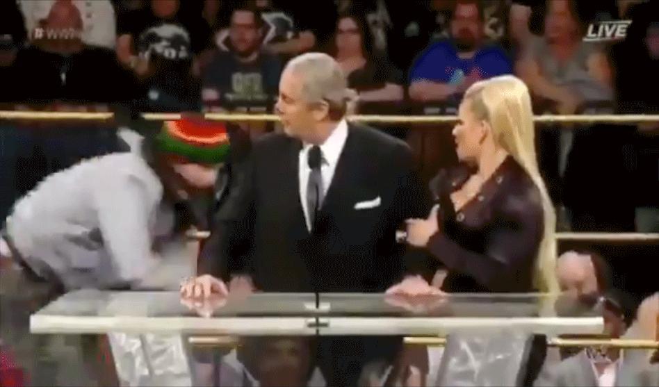 Bret Hart Fake Fan Attack